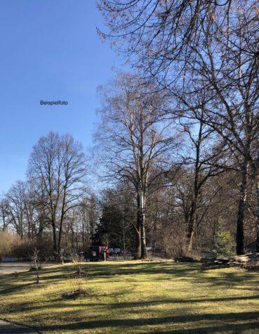 2660 BGF am Park! Großes Baugrundstück zur Errichtung eines Wohnhauses & Stadtvilla in Toplage, 12524 Treptow, Grundstück