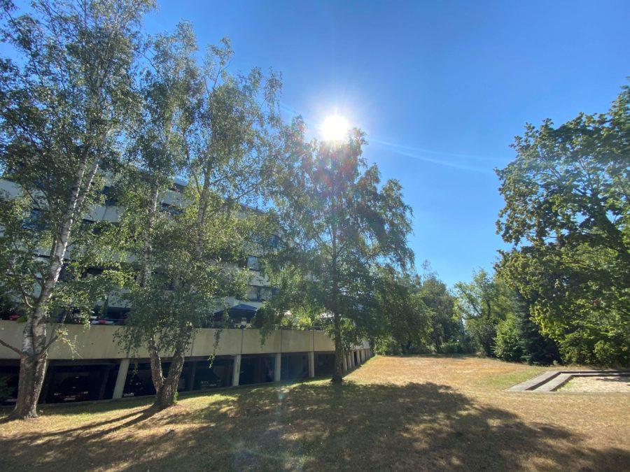 TOPLAGE! Sehr attraktive, ruhige & helle Wohnung mit großer Sonnenterrasse und Blick ins Grüne - Titelbild