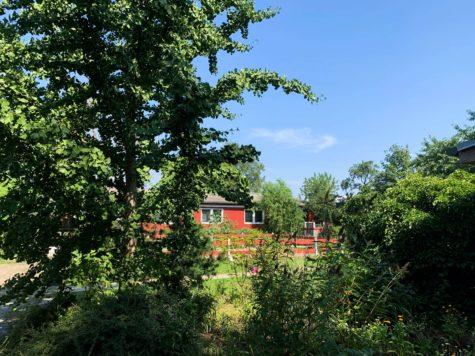 NUR ca. 450€/m²: Vielseitig nutzbares Wohn- und Gewerbegrundstück in sehr begehrter Lage, 13127 Berlin, Grundstück