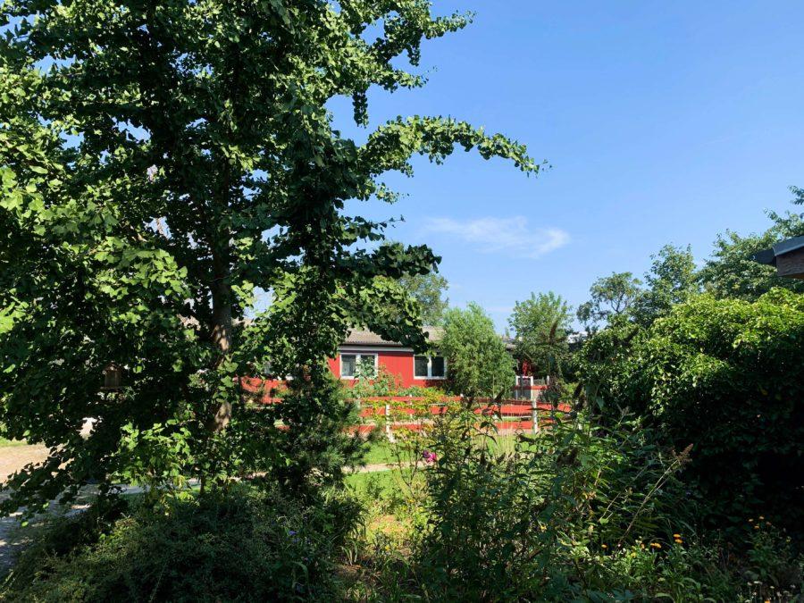 NUR ca. 450€/m²: Vielseitig nutzbares Wohn- und Gewerbegrundstück in sehr begehrter Lage - Titelbild