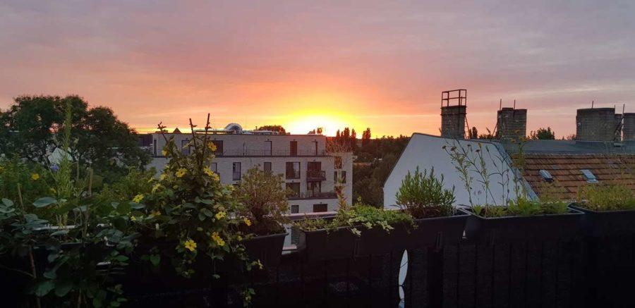 Ruhe mit Privatsphäre und Design! Einzigartiges Dachgeschoss mit vielen Extras in Bestlage - Aussicht (Sonnenuntergang)